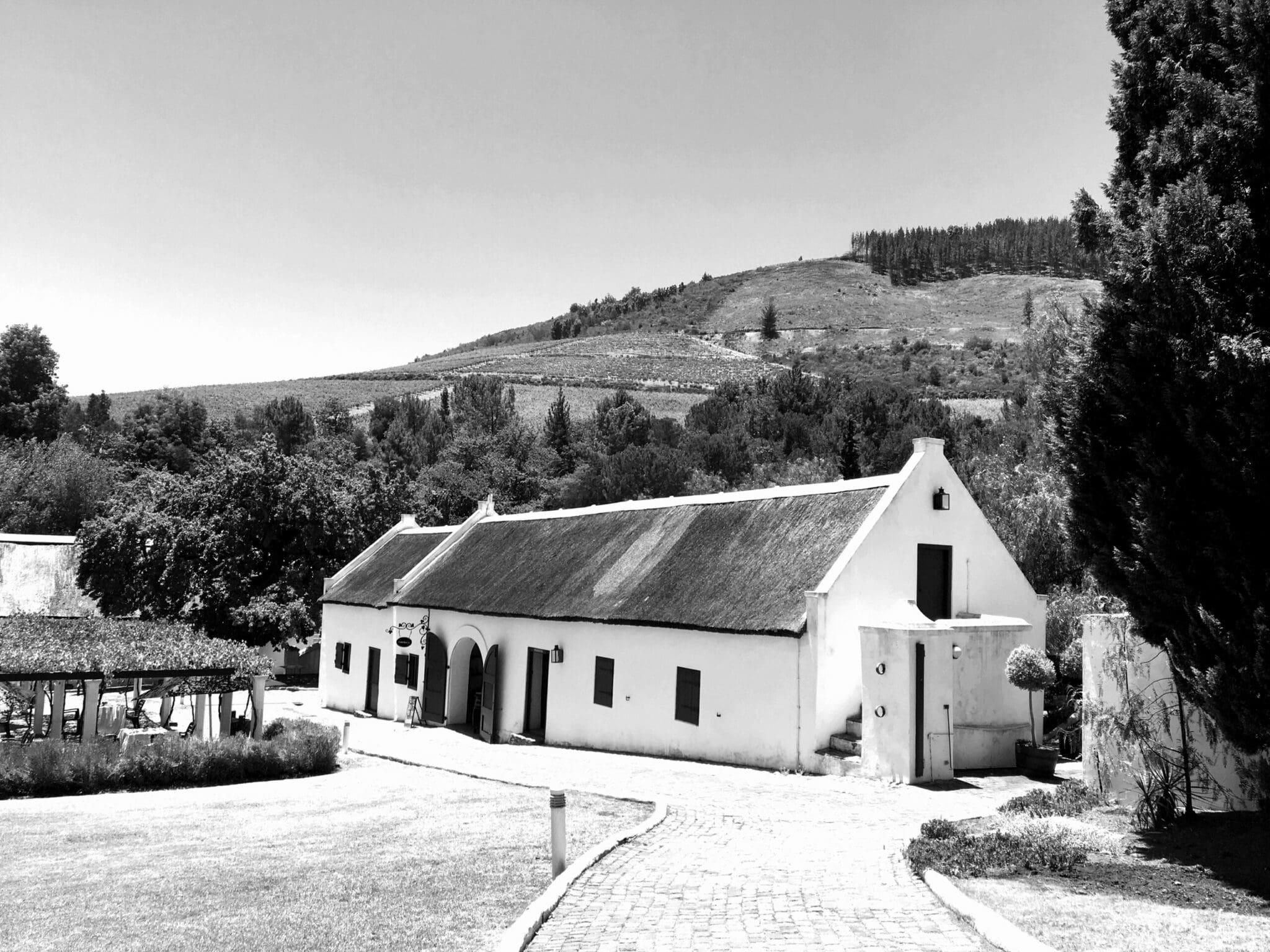 Südafrikanische Weine und Olivenöl - Über Kapvinum