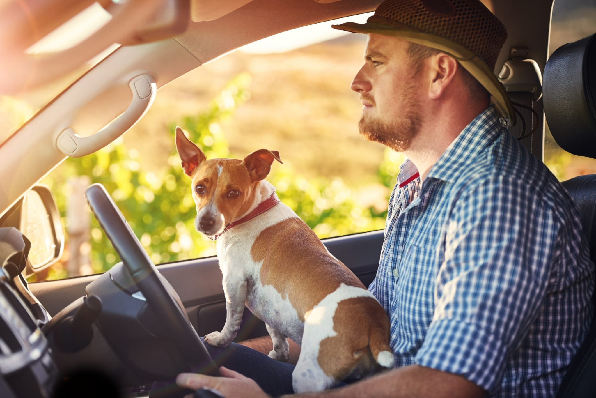 Shot of a man and his dog driving out in the countryside