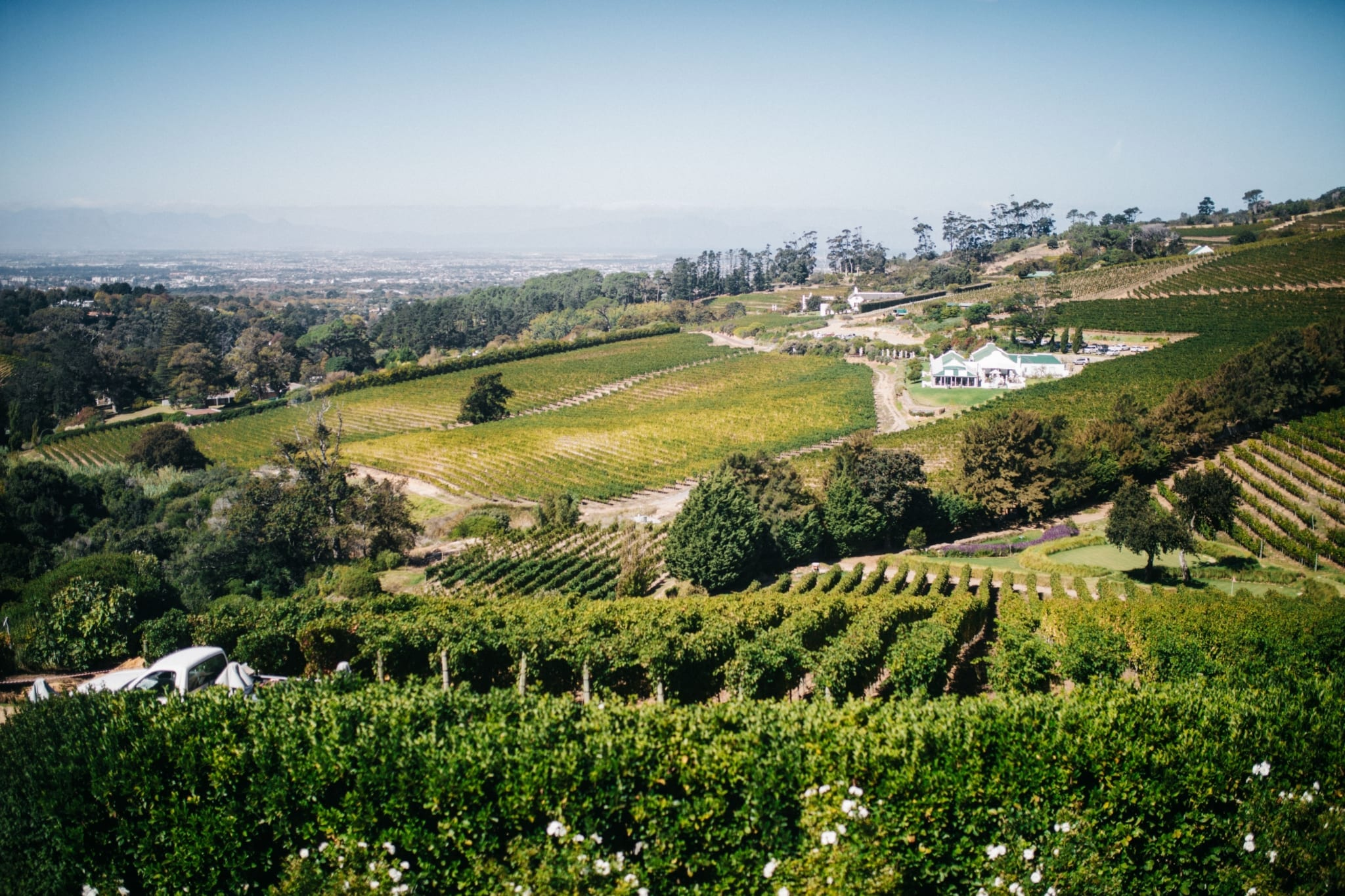 nature-landscape-green-vineyard-wine-winery-beautiful-south-africa-cape-town-wine-farm_t20_oEyN4A